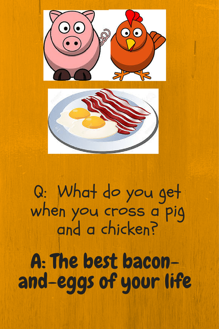 pig_and_chicken